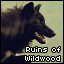 Ruins of Wildwood